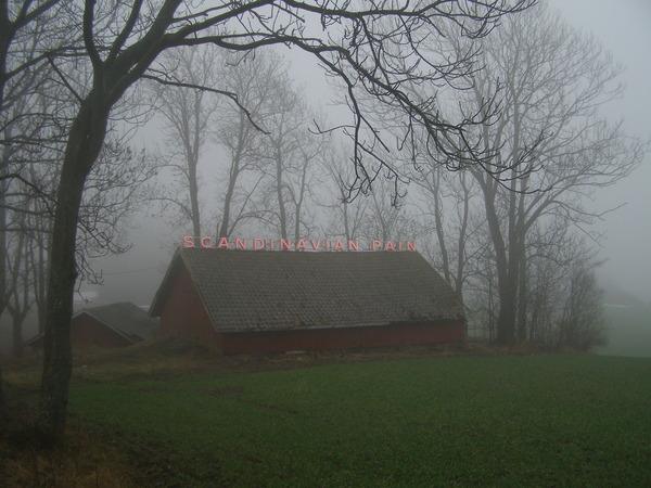RK_i8_Scandinavian Pain (fog)